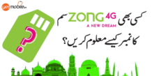 Zong Number Check Code – How To Find Zong Numbers